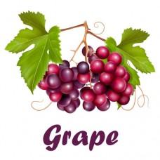 Grape E-Liquid 10ml by Oplus