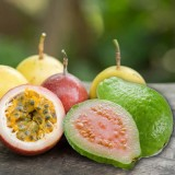 Guava Passion Fruit 3mg VG E-Liquid 30ml by Oplus