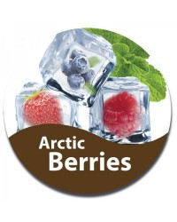 Arctic Berries E-Liquid Vape Juice 30ml by Oplus