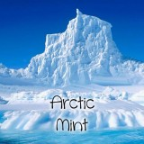 Arctic Mints Nic Salts Vape Juice 30ml by Oplus