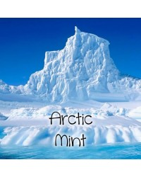 Arctic Mints Nic Salts Vape Juice 10ml by Oplus