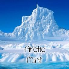 Arctic Mints Nic Salts Vape Juice 10ml by Oplus