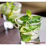 Cool Mint Nic Salts Vape Juice 30ml by Oplus