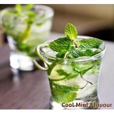 Cool Mint Nic Salts Vape Juice 10ml by Oplus