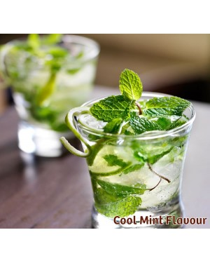 Cool Mint Nic Salts Vape Juice 10ml by Oplus