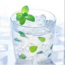 Ice Mints Nic Salts Vape Juice 10ml by Oplus