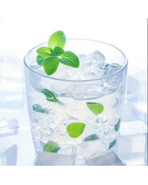 Ice Mints Nic Salts Vape Juice 30ml by Oplus