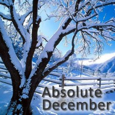 Absolute December VG E-Liquid Vape Juice 30ml by Oplus